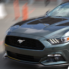 Ford Mustang - (15') - Tor Bednary
